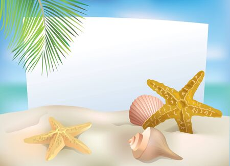 starfish beach: Beach blank paper Contains transparent objects