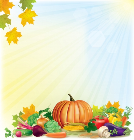 Autumn harvest background. Contains transparent objects.  Vector