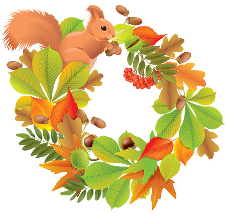 Autumn wreath with squirrel.   Vector