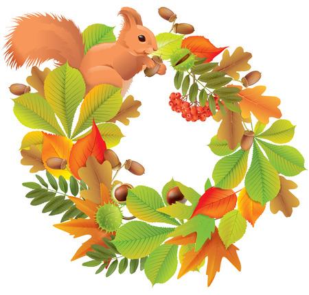 arbre automne: guirlande d'automne avec l'�cureuil.
