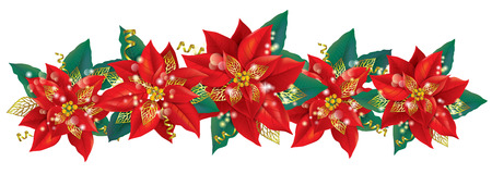 poinsettia: Christmas garland of poinsettia. Contains transparent objects. EPS10