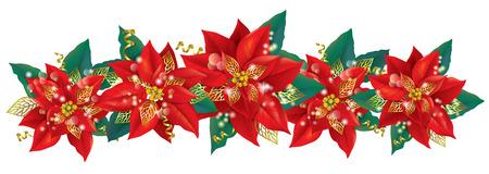 flor de pascua: Guirnalda de la Navidad de flor de pascua. Contiene los objetos transparentes. EPS10