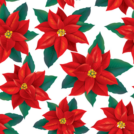 poinsettia: Seamless pattern of red Poinsettia. Contains transparent objects. EPS10