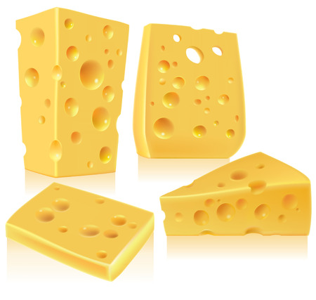 protein food: Cheese.