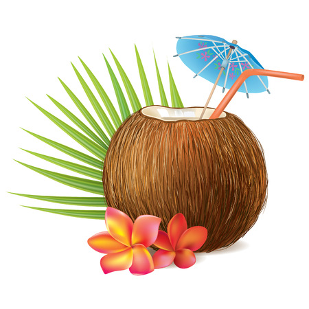 Coconut drink. Contains transparent objects. EPS10 Ilustração
