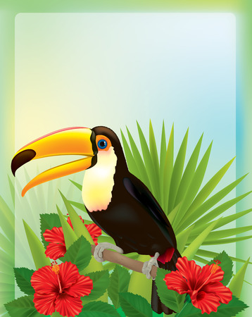 tropical bird: Tropical background with toucan. Contains transparent objects.