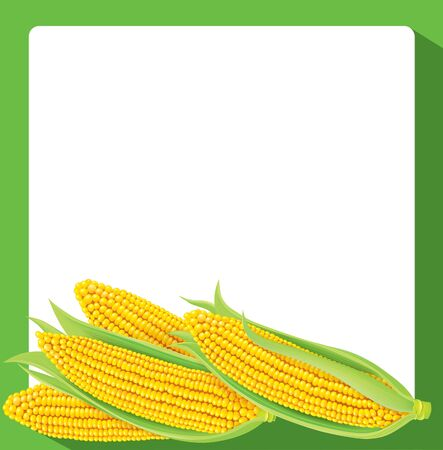 abundance: Corn banner with a green frame Illustration
