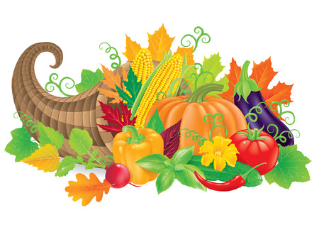 basil: Cornucopia filled with fresh vegetables Illustration