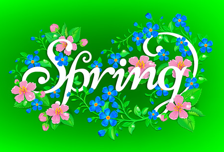 butterfly flower: Fresh and bright spring background with flowers. Illustration