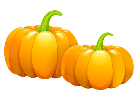 Two beautiful ripe pumpkins without leaves Illustration