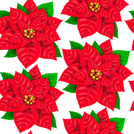 Seamless pattern of red fresh poinsettia