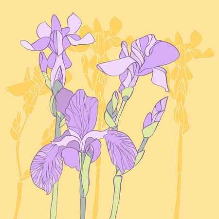 Iris frowers background Иллюстрация