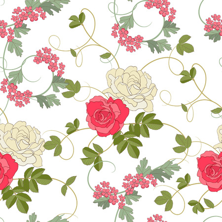 Roses on white background Stock Vector - 7730208