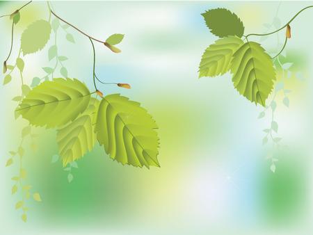 reins: Background of fresh green leaves  Illustration
