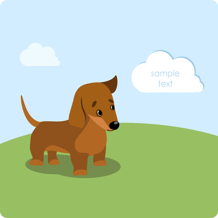 Dachshund puppy on the green lawn Vector