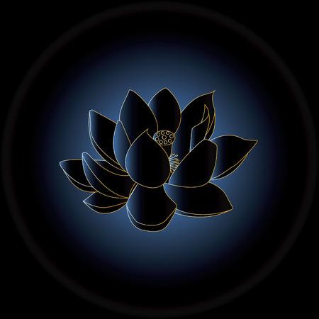 buddha lotus: Blue shadow light behide the dark blue Buddha lotus