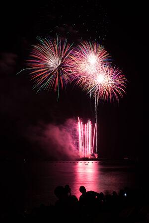 Blooming firework of international firework festival