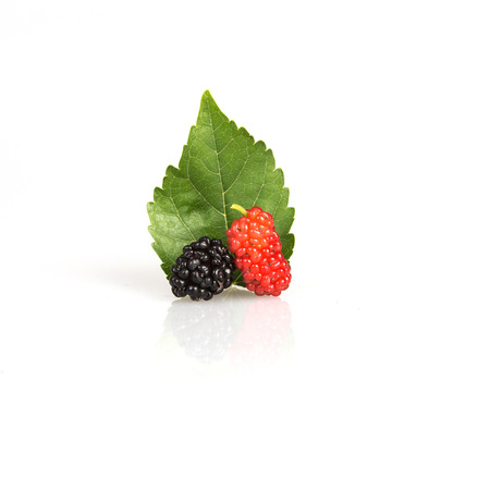 red Mulberry fruit