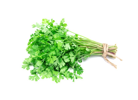 the Fresh Green parsley on  white background Reklamní fotografie
