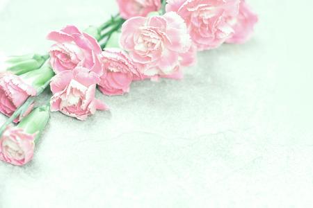 カーネーションの花から抽象的な柔らかい甘いピンクの花背景