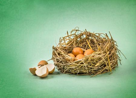 nido de pajaros: ramitas del nido con huevos de gallina marrón con cáscara de huevo roto y vacío en el papel del grunge verde