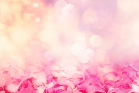 愛のロマンチックなバレンタインの美しい新鮮な甘いピンク バラ花弁の抽象的な照明背景の境界 写真素材