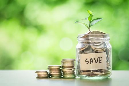お金の節約と投資金融の概念のためのコインのガラスの瓶に育つ植物