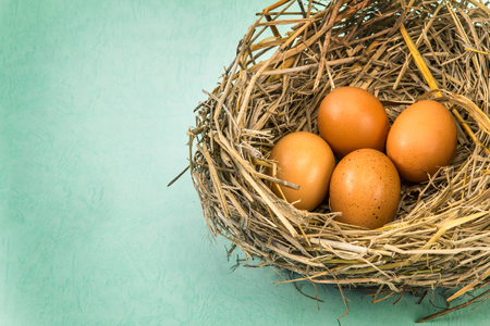 straw twig: the twigs nest with brown chicken eggs