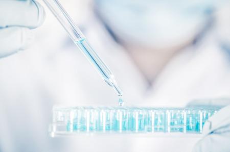 Zamknij naukowca pracującego w laboratorium, aby przeanalizować niebieskie wyekstrahowane cząsteczki DNA na płytce mikroprobówkowej, koncepcję analizy testów klinicznych lub naukowych