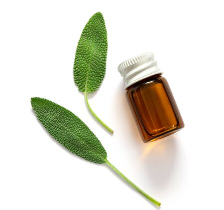 Close up fresh green sage herb leaf with bottle of essential oil on white background , herb essence concept