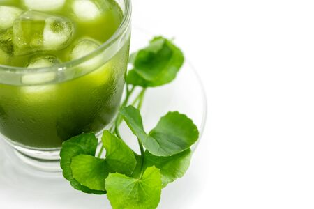 Fresh green Gotu kola, Centella asiatica leaf and juice on white background, Asiatic pennywort, Indian pennywort, ayurvedic medical herb concept