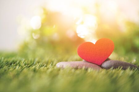 close up a red heart shape on green fresh grass , good relax and love romance feeling symbol , valentines day background  Zdjęcie Seryjne