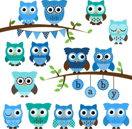 isolated owl: Colecci�n de la ducha del beb� de los b�hos y ramas tem�ticas Vectores