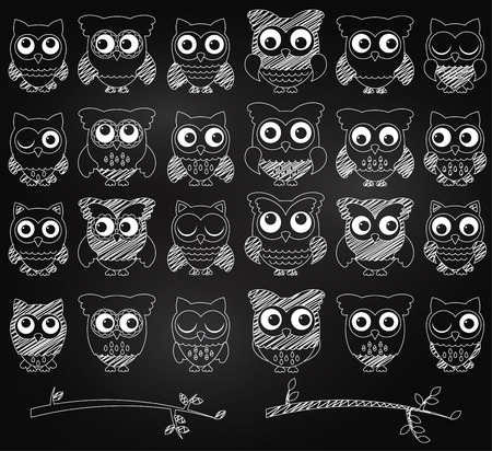 Chalkboard Style Set of Cute Owls and Branches  Vector