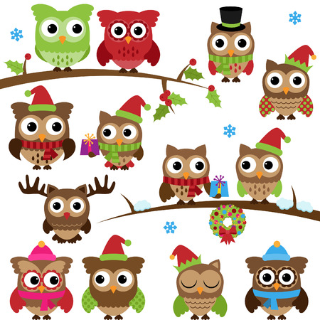 Collection of Christmas Holiday Themed Owls and Branches Vector