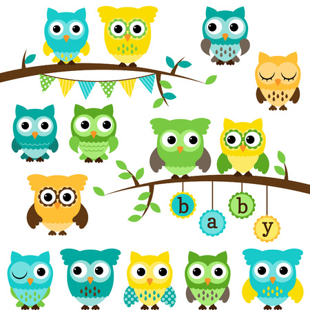 Collection of Gender Neutral Baby Shower Themed Owls and Branches  Vector