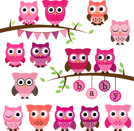 Collection of Girl Baby Shower Themed Owls and Branches  Vector