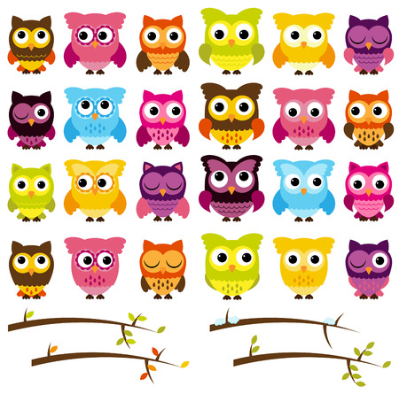 Collection of Cute Owls and Seasonal Branches  Illustration