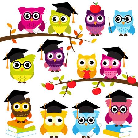 diploma: Colección de la escuela o de graduación Búhos temáticos Vectores