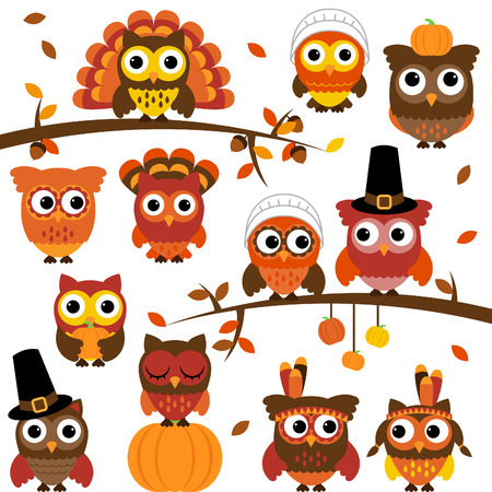 Thanksgiving and Autumn Themed Owl Collection with Branches  Vector
