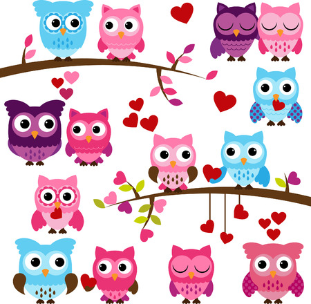 Collection of Valentine s Day or Love Themed Owls  Vector