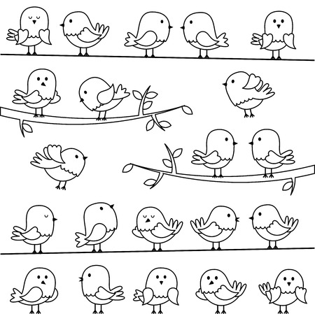 woodland: Set of Line Art Cartoon Birds