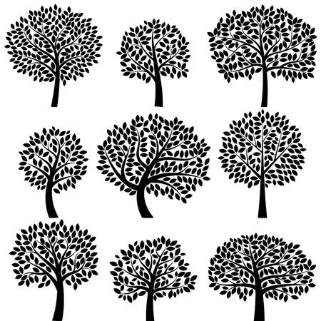 arbol genealógico: Colección de vectores de Siluetas del árbol