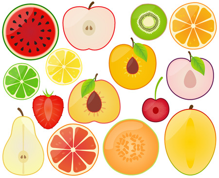 half apple: Vector Collection of Fruit Slices