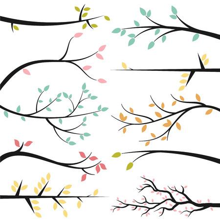 arbol de la vida: Colección de vectores de la rama de árbol Siluetas Vectores