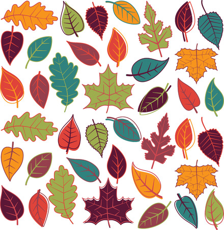 Large Vector Set of Abstract Autumn Leaves Vector