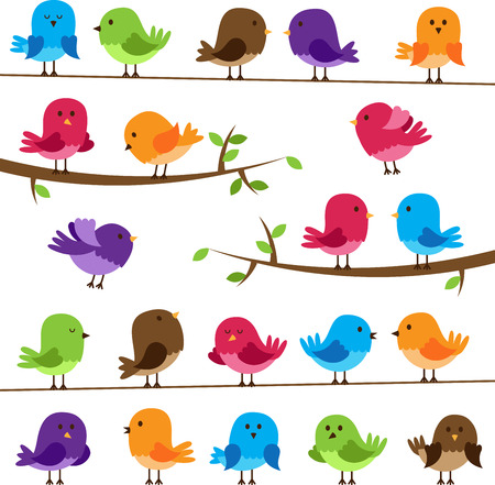 owl on branch: Vector Set of Colorful Cartoon Birds Illustration