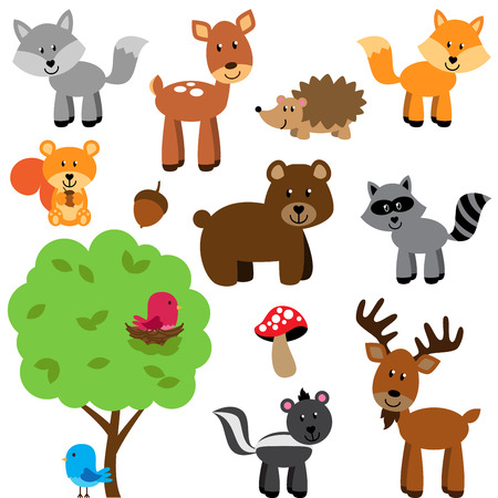 skunk: Vector Set of Cute Woodland and Forest Animals Illustration