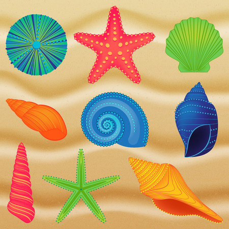 Vector Collection of Shells Vector
