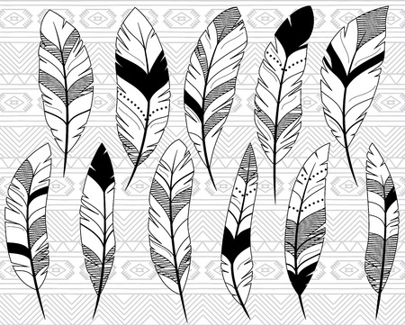 Vector Collection of Doodle Stylized Feathers Vector